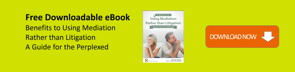 Divorce mediation business plan bundle